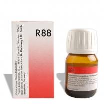dr. reckeweg r 88 viral drops